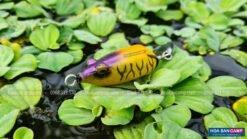 Mồi Câu Lure Bumpy Frog